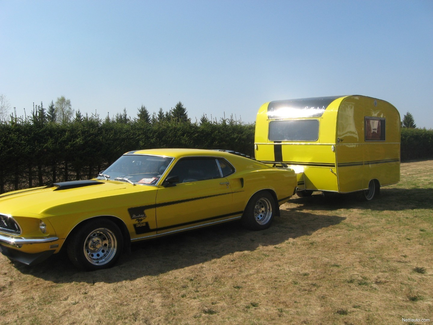 Add to compare enlarge image ford mustang